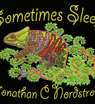 cover image of childrens book sometimes sleep by Jonathan Nordstrom